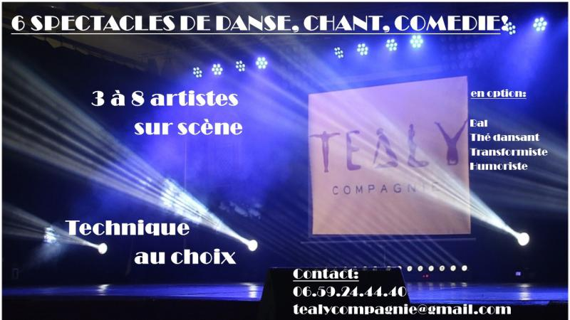 Téaly Compagnie Spectacles et Animations